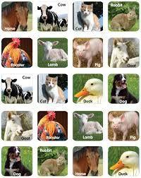 Resultado de imagen para farm animals