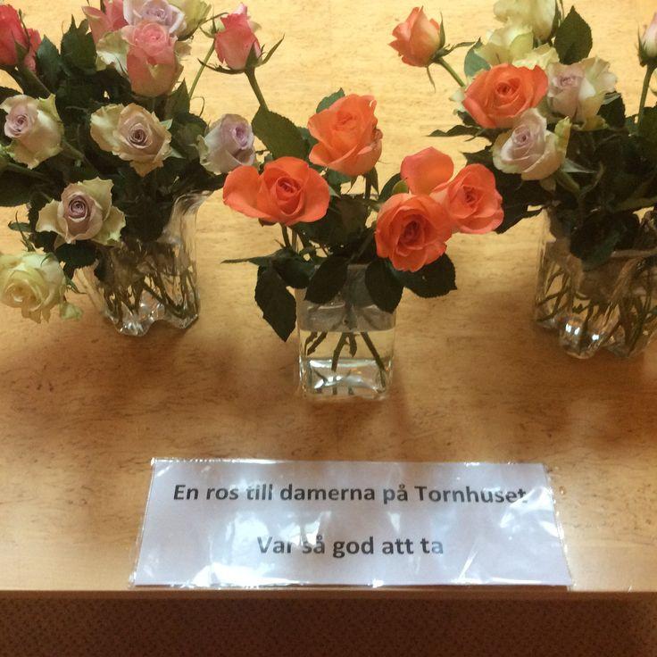 Kvinnodag i Göteborg 2016. One rose for everyone!