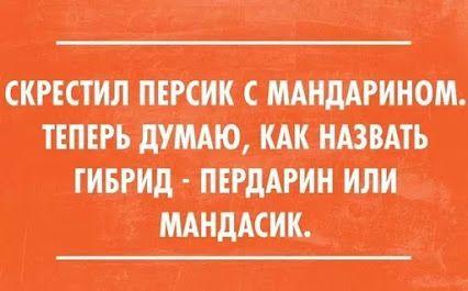 Olga Ovsyannikova – Google+