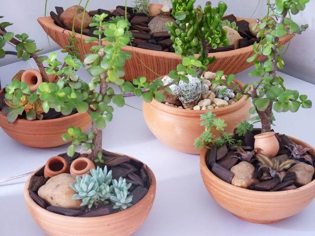 Terrários e Mini Jardins
