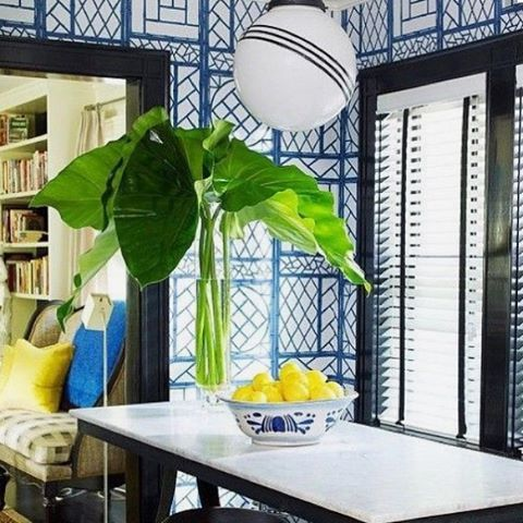 Oh how I love Lyford Trellis wallpaper! 💙💙💙 Looks so modern in this design by @prmele 💙💙💙 #inspiration #lyfordtrellis #wallpaper #kitchen #trellis #blackandblue #modern #chic #ecclectic