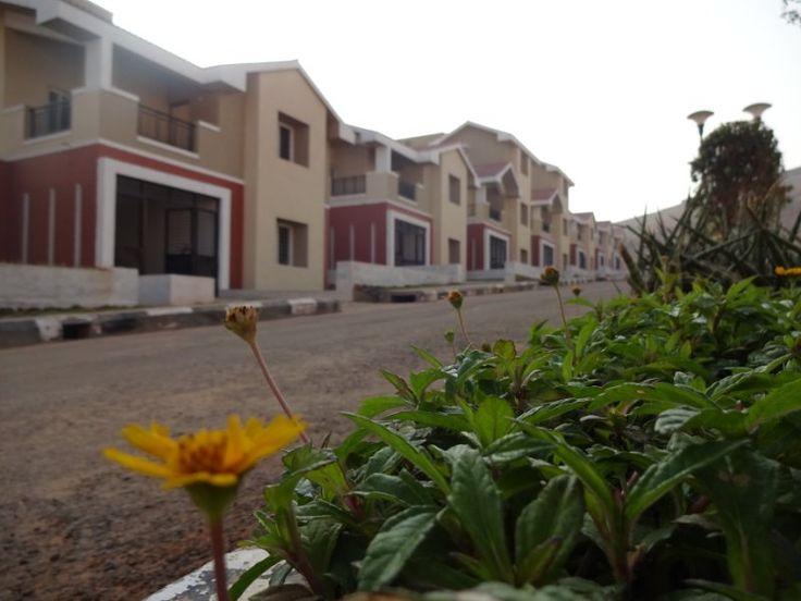 Villas view