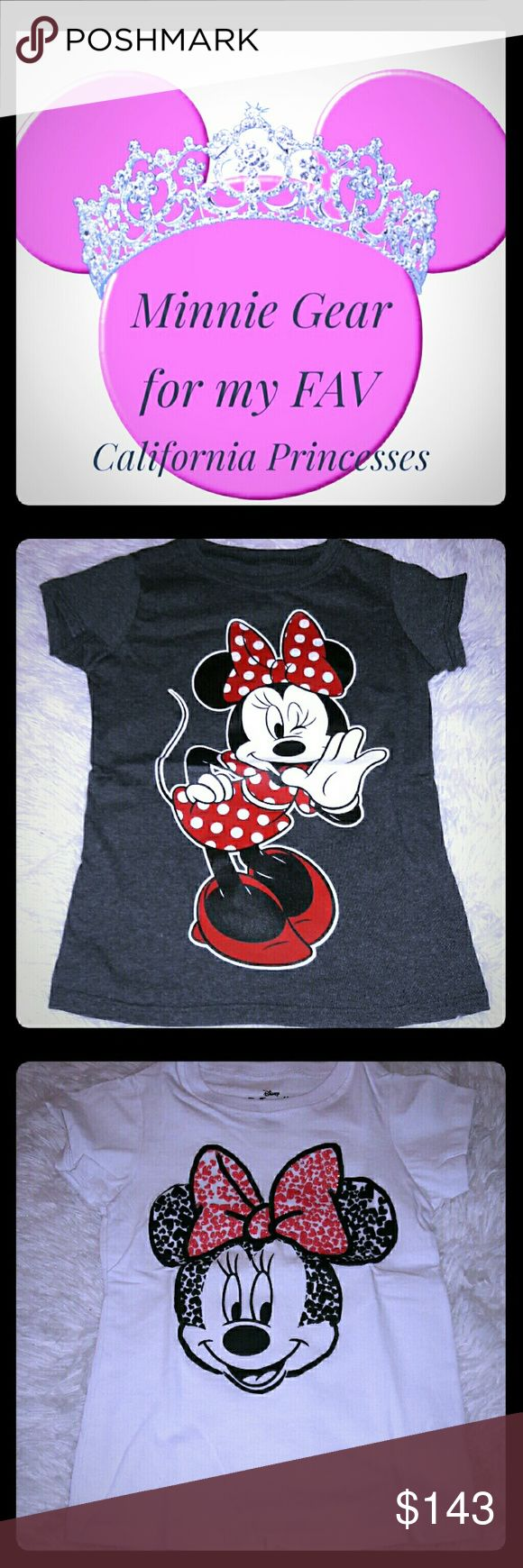 Minnie Mouse Gear 1 white Minnie in 6/6X...2 gray size 4/5 & 6/6X..blue Minnie in 6/6X...pink Life of Pets 4 and 6 (maybe was just size 4)..and didn't know if you still wanted dress 5T or 4T because of it getting cooler..just lmk what you want me to take out..or missed California Girls Other