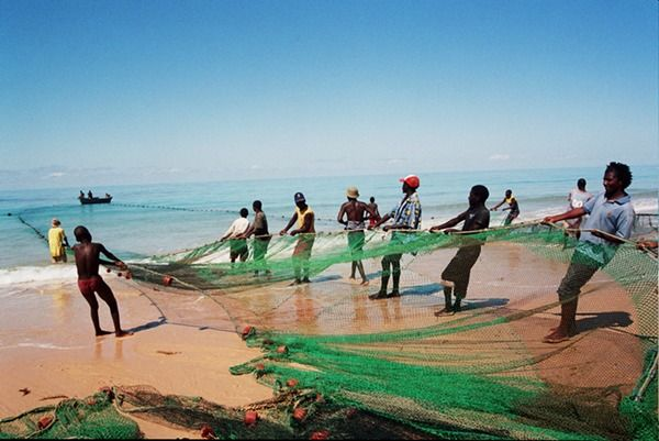 Whether caught by the locals or by yourself, you can enjoy fresh sea food everyday in Mozambique.