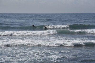 Rescatan restos de surfista húngaro que desapareció en playa de Puerto Plata