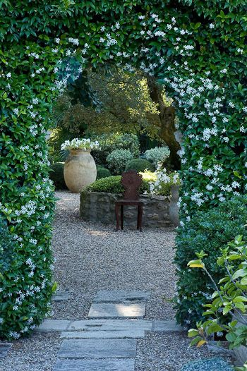 Beautiful living arch Jasmine garden entry | outdoor spaces