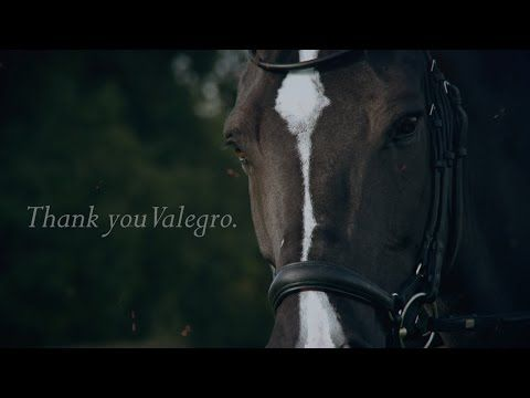Valegro's very last performance - FEI World Cup™ Dressage - London Olympia 2016 - YouTube
