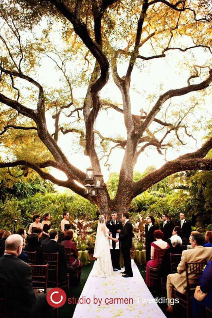 Villa Woodbine Weddings | Get Prices for Miami Wedding Venues in Miami, FL