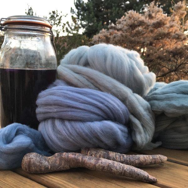 Teinture naturelle facile: teindre la laine en bleu avec de la carotte violette