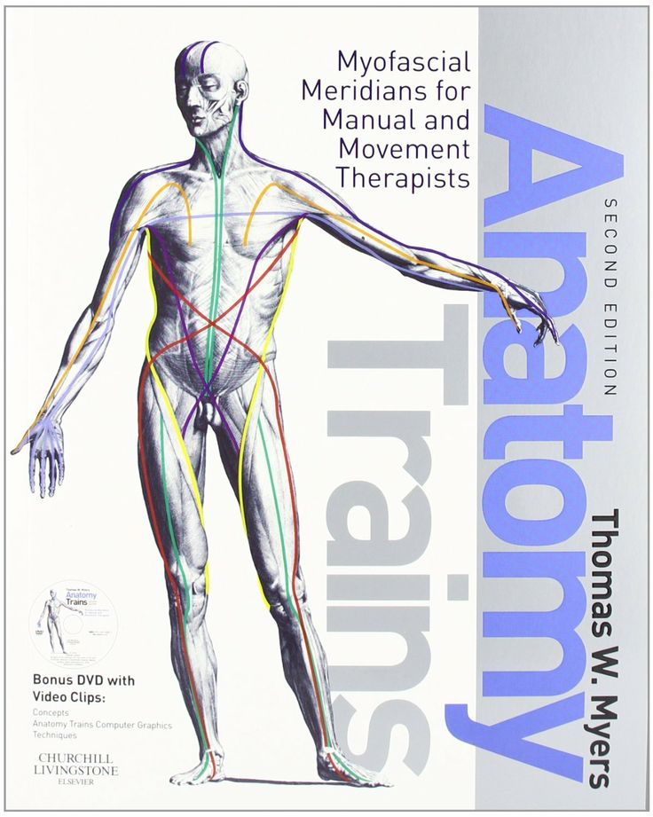16 best Structural Manual Therapy images on Pinterest | Manual ...