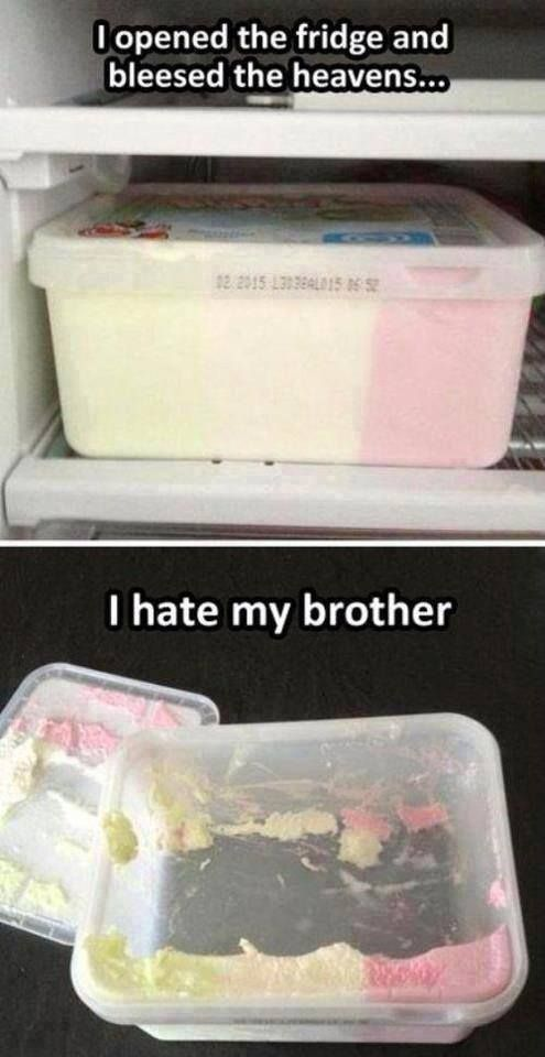 I hate my brother - http://jokideo.com/i-hate-my-brother/