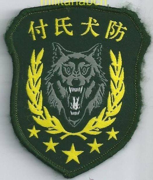 People's Republic of China. Insignia of Special Forces. Embroidered