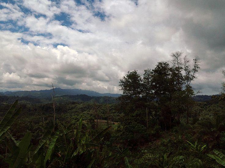 Mit dem Bus von Sandakan nach Kotakinabalu, Borneo