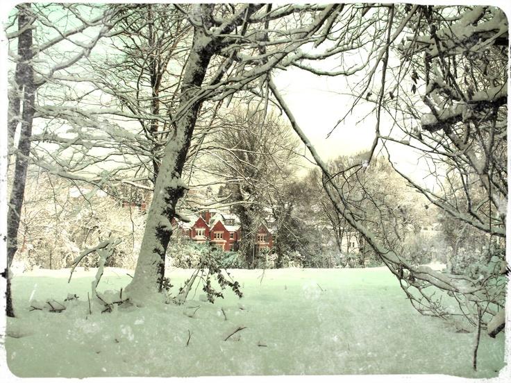 Tunbridge Wells in Winter