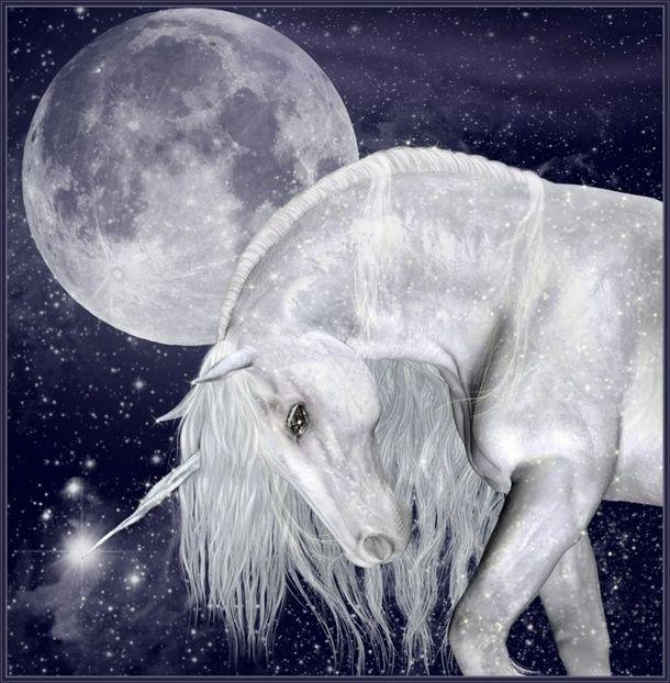 183 Best Mythological Messes Redux Images On Pinterest: 183 Best Images About Unicorns On Pinterest