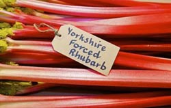 Wakefield Festival of Food & Rhubarb