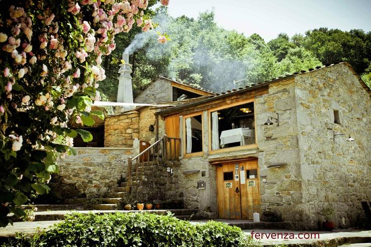 Precioso rosal de la Casa Grande da Fervenza (Lugo) en primavera. Casa de turismo rural de Galicia. fervenza.com
