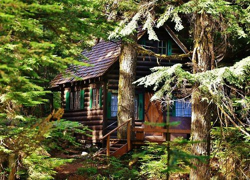 1000 images about log cabin shutters on pinterest red for National forest service cabins