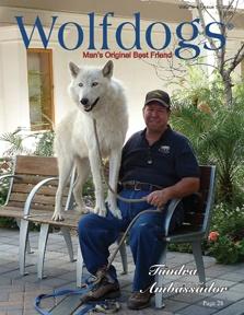 Wolfdogs Magazine