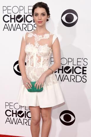 People's Choice Awards 2014 - Terra USA