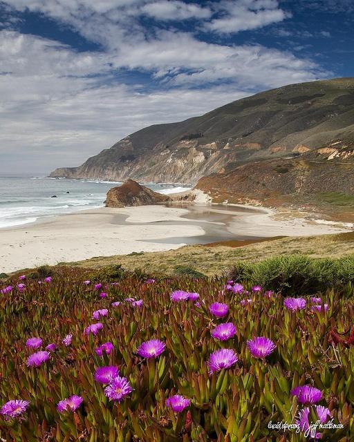 Little Sur beach ( along the Big Sur coast ) Montery, California via flickr
