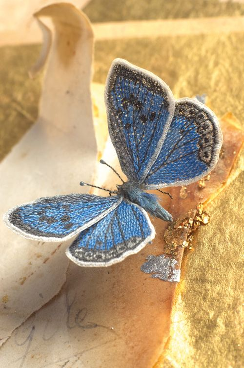 Large Blue Butterfly, taken from Embroidered Butterflies by Jane E Hall