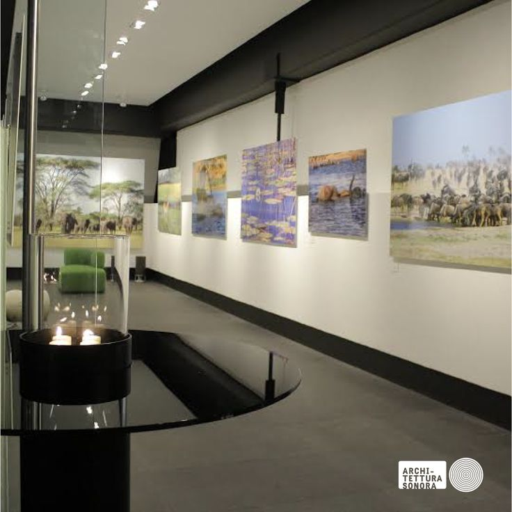 Great pictures of Africa by #ManuelLazcano and great sound by #ArchitetturaSonora in the gallery of Park Plaza in the Design District, Santa Fe, Mexico City. Thanks to our partner Raul Acevedo of ASMX and Brian Calderon Nuñez for the images.
