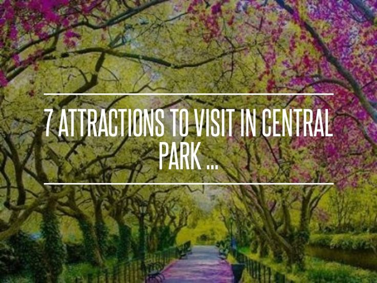 39 best central park images on pinterest central park