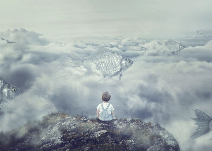 Fish flying through the clouds. Cloud fish. Surreal photography. Composite photography. Cool tones.