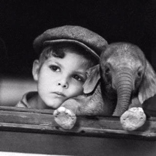 Elephant! Baby elephant!Little Kids With Animal, Best Friends, Baby Elephants, Cutest Animal Baby, Boys Photos, Baby Animal Photography, Elephant Baby, Baby Boy, Little Boys