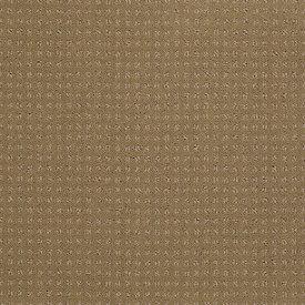 Color: 00701 Field Stone In Savannah - EA024 Shaw ANSO Nylon Carpet Georgia Carpet Industries