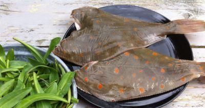 Vis | Eenvoudige en lekkere recepten voor smaakvol koken en bakken