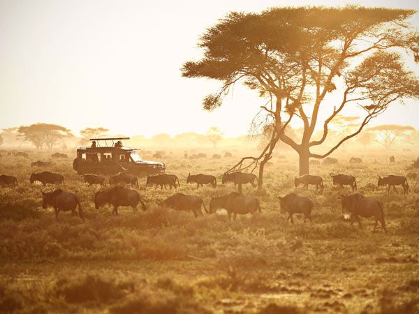 best safari park in Africa