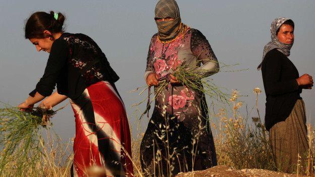 Del petróleo a la esclavitud: las 6 principales fuentes de financiamiento de Estado Islámico - BBC Mundo La minoría yazidi ha sido esclavizada por Estado Islámico