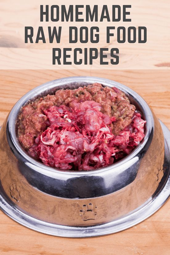 Easy homemade raw dog food recipe ideas