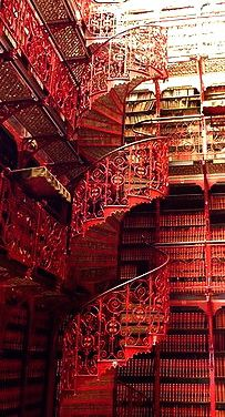 Library of the Dutch Parliament - Hague, Netherlands