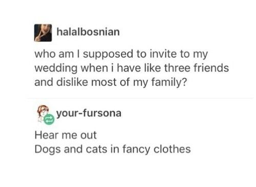 I mean I love my family but ahsksks I'm still gonna invite dogs in fancy clothes for my wedding