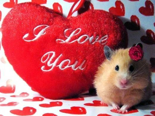 78 most romantic valentines day greeting cards pouted online lifestyle magazine