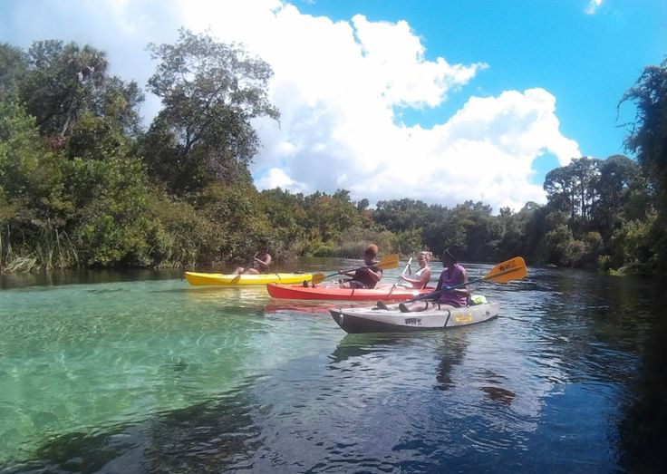 Best Kayaking And Canoeing Images On Pinterest Traveling - The florida kayaking guide 10 must see spots for paddling