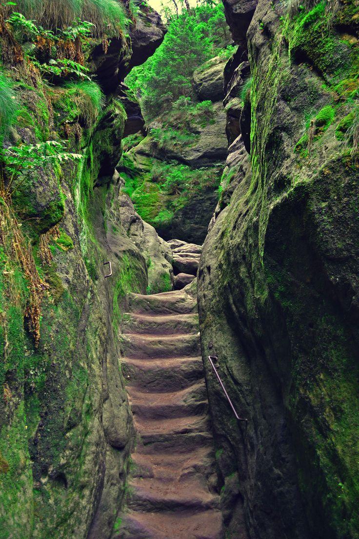 Saxon Switzerland National Park / Germany | Want to go ...