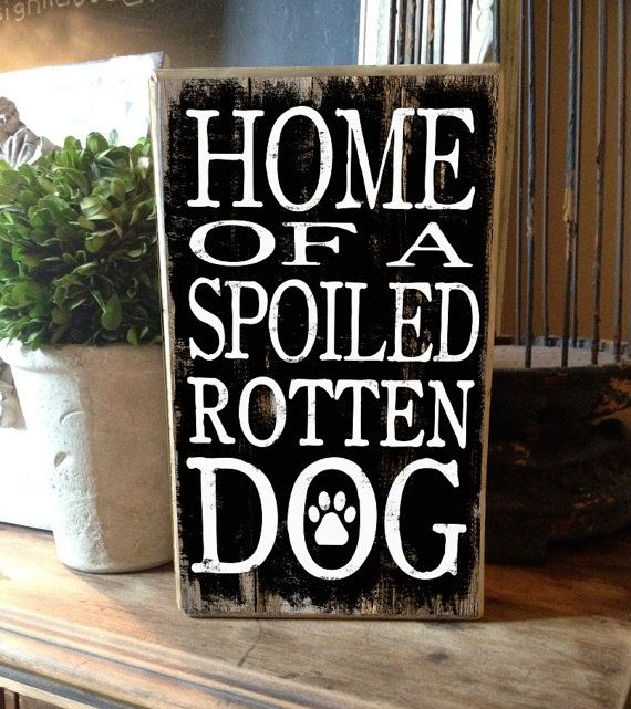 Dog decor typography box sign Home of a spoiled rotten dog.