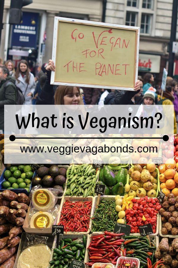 vegans diets arent cruelty free