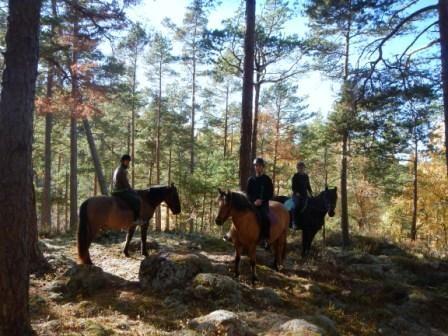 Tumbo Adventures - för dig som gillar hästar och natur