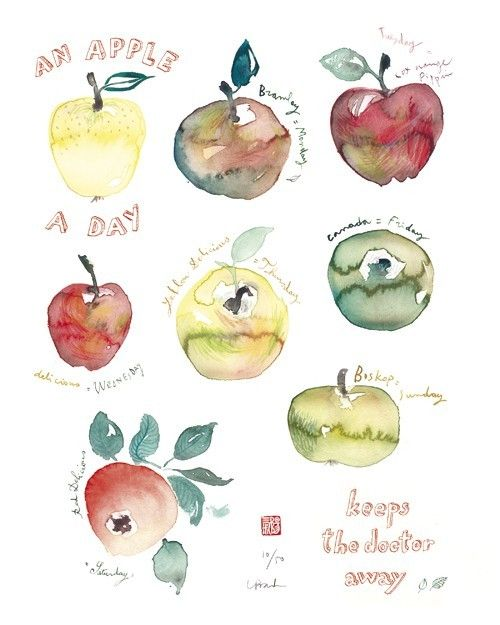 Lucile Prache,Food illustration - artist study , How to Draw Food, Artist Study Resources for Art Students, CAPI ::: Create Art Portfolio Ideas at milliande.com , Inspiration for Art School Portfolio Work, Food, Drawing Food, Sketching, Painting, Art Journal, Journaling, illustration