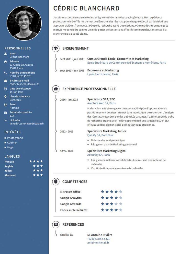 Modèle de CV gratuit en 2020 Modèle cv, Cv professionnel