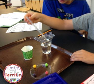 scientific method with lifesavers Scientific method task cards: experiments using the scientific method, variables, hypotheses, asking a testable question, and valid conclusions if your students are like mine, they need extra help with the scientific method and experiments.