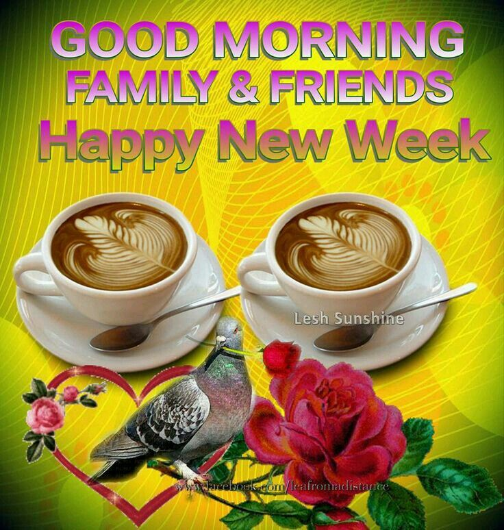 Good morning sister ,wish you a Lovely Monday and a happy week,.take ...