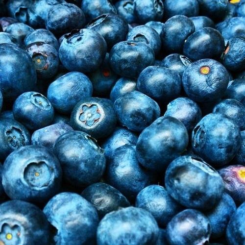 Blueberries @ http://eyelinerandginger.tumblr.com/