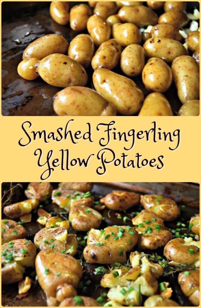 Best 25 yellow potatoes ideas on pinterest steak potatoes crispy and delicious this recipe for these garlic chives smashed fingerling yellow potatoes will quickly ccuart Images