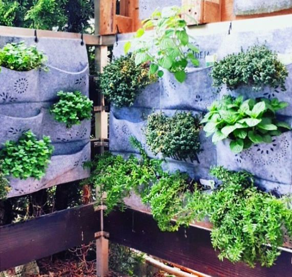 Vertical Garden, Wall Pocket Planter, Herb Planter, watertight Indoor Wall Planter, Balcony Planter, Hanging Planter, Outdoor Planter 3x3